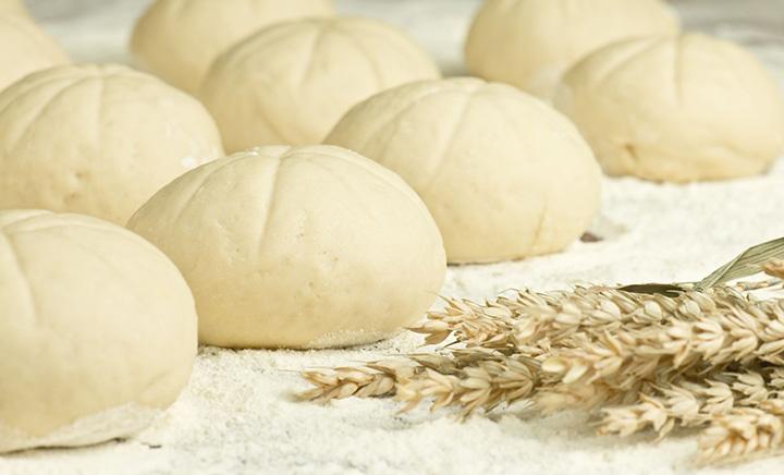 発酵中のパン