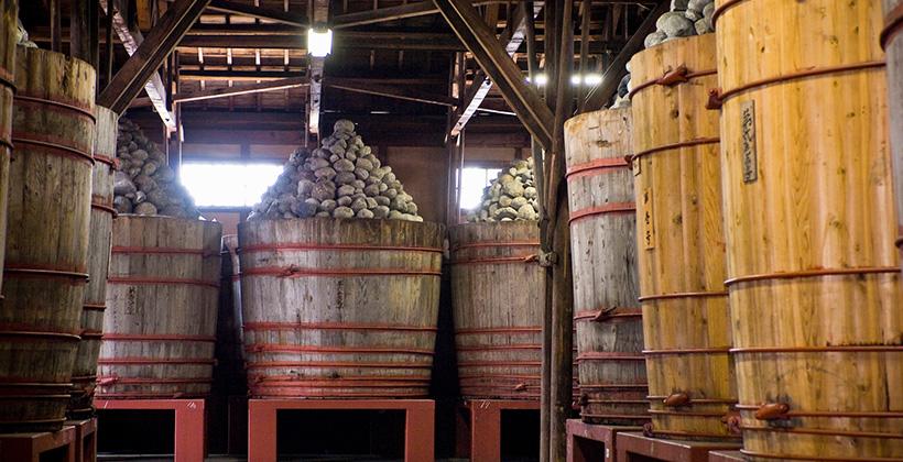 発酵中の味噌